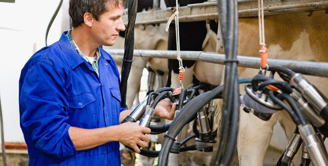 Compressed air used at the milking parlour